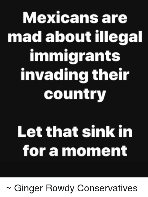 Memes, Mad, and Rowdy: Mexicans are  mad about illegal  immigrants  invading their  country  Let that sink in  for a moment ~ Ginger  Rowdy Conservatives