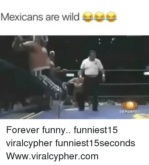 Funny, Forever, and Wild: Mexicans are wild Gee Forever funny.. funniest15 viralcypher funniest15seconds Www.viralcypher.com