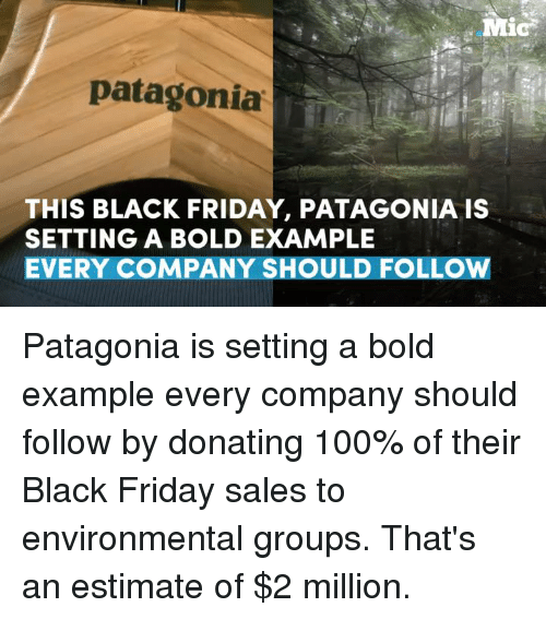 Black Friday, Memes, and Bold: Mic  patagonia  THIS BLACK FRIDAY, PATAGONIA IS  SETTING A BOLD EXAMPLE  EVERY COMPANY SHOULD FOLLOW Patagonia is setting a bold example every company should follow by donating 100% of their Black Friday sales to environmental groups.  That's an estimate of $2 million.