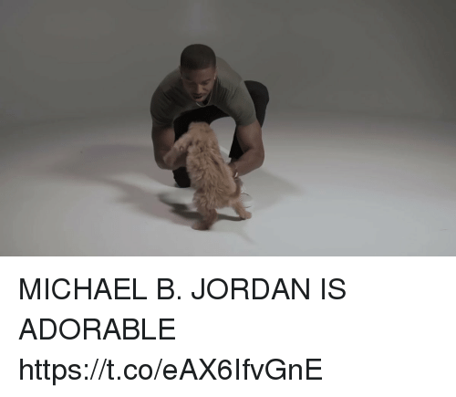 Michael B. Jordan, Jordan, and Michael: MICHAEL B. JORDAN IS ADORABLE https://t.co/eAX6IfvGnE