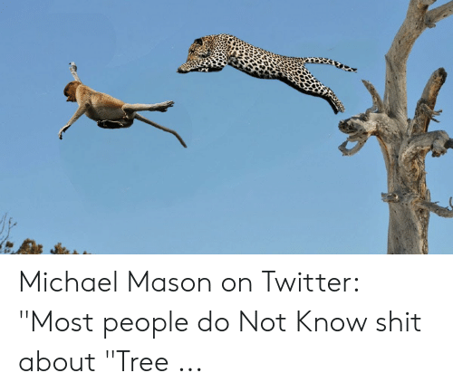 """Four Dimensional Chess: Michael Mason on Twitter: """"Most people do Not Know shit about """"Tree ..."""