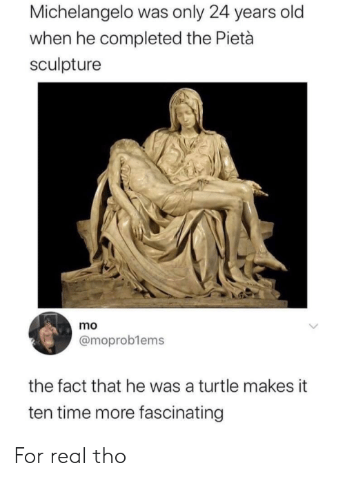 Michelangelo, Time, and Turtle: Michelangelo was only 24 years old  when he completed the Pietà  sculpture  mo  @moproblems  the fact that he was a turtle makes it  ten time more fascinating For real tho