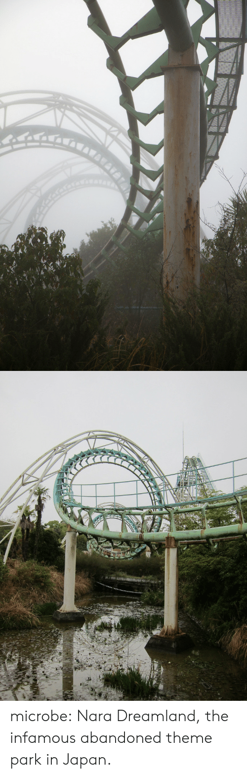 cad: microbe: Nara Dreamland, the infamous abandoned theme park in Japan.