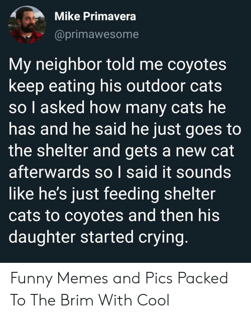 Cats, Crying, and Funny: Mike Primavera  @primawesome  My neighbor told me coyotes  keep eating his outdoor cats  so l asked how many cats he  has and he said he just goes to  the shelter and gets a new cat  afterwards so I said it sounds  like he's just feeding shelter  cats to coyotes and then his  daughter started crying. Funny Memes and Pics Packed To The Brim With Cool