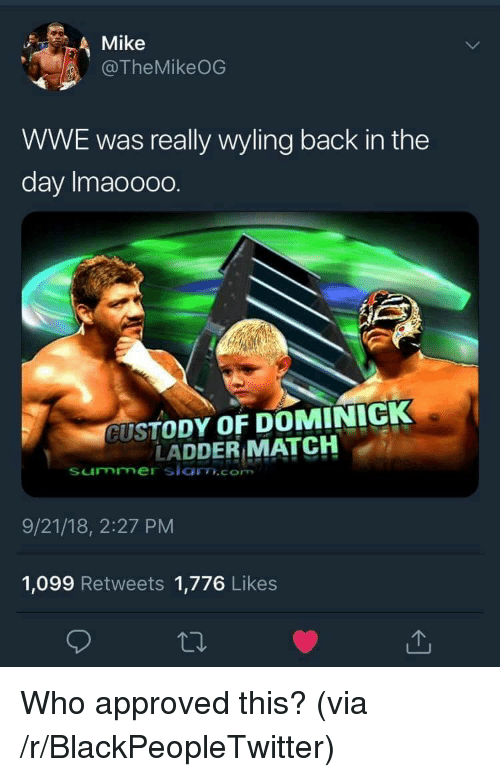 Blackpeopletwitter, World Wrestling Entertainment, and Match: Mike  @TheMikeOG  WWE was really wyling back in the  day Imaoo00  USTODY OF DOMINICK  LADDER MATCH  Suomer sia.COm  9/21/18, 2:27 PM  1,099 Retweets 1,776 Likes Who approved this? (via /r/BlackPeopleTwitter)