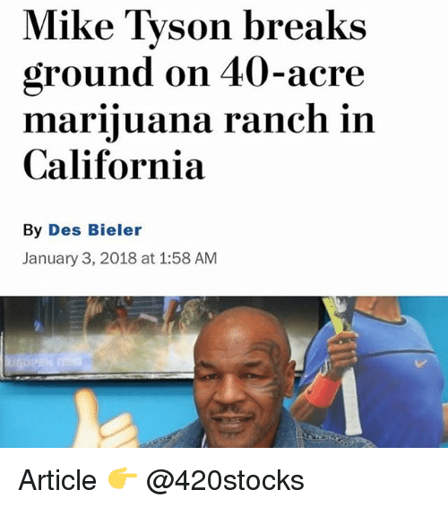 Memes, Mike Tyson, and California: Mike Tyson breaks  ground on 40-acre  marinluana ranch in  California  By Des Bieler  January 3, 2018 at 1:58 AM Article 👉 @420stocks