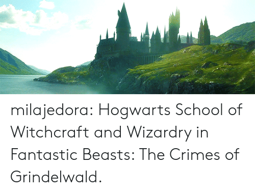 School, Target, and Tumblr: milajedora: Hogwarts School of Witchcraft and Wizardry in Fantastic Beasts: The Crimes of Grindelwald.