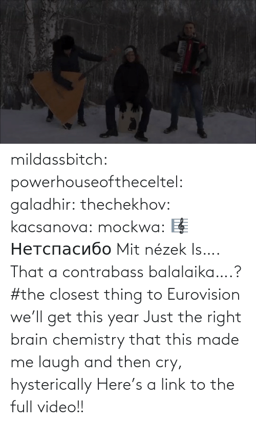 laugh: mildassbitch: powerhouseoftheceltel:  galadhir:  thechekhov:  kacsanova:  mockwa:    🎼  Нетспасибо  Mit nézek    Is…. That a contrabass balalaika….?    #the closest thing to Eurovision we'll get this year    Just the right brain chemistry that this made me laugh and then cry, hysterically    Here's a link to the full video!!