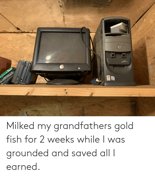 grounded: Milked my grandfathers gold fish for 2 weeks while I was grounded and saved all I earned.