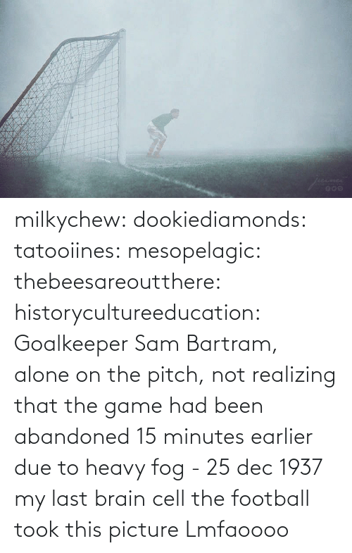 sam: milkychew: dookiediamonds:  tatooiines:   mesopelagic:  thebeesareoutthere:  historycultureeducation: Goalkeeper Sam Bartram, alone on the pitch, not realizing that the game had been abandoned 15 minutes earlier due to heavy fog - 25 dec 1937 my last brain cell   the football took this picture    Lmfaoooo