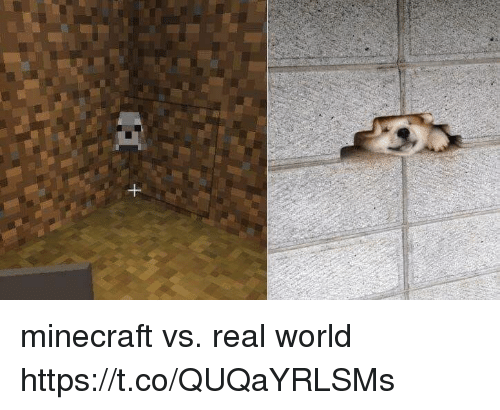 Minecraft, World, and Real World: minecraft vs. real world https://t.co/QUQaYRLSMs