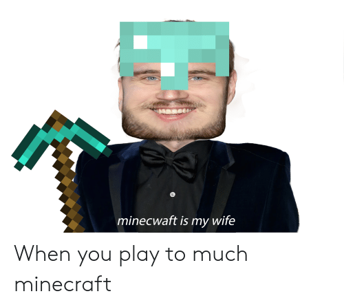 Minecraft, Wife, and Play: minecwaft is my wife When you play to much minecraft