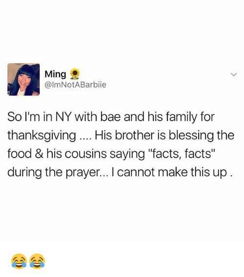 "Bae, Facts, and Family: Ming  @ImNotABarbiie  So I'm in NY with bae and his family for  thanksgiving.. His brother is blessing the  food &his cousins saying ""facts, facts  during the prayer... I cannot make this up 😂😂"