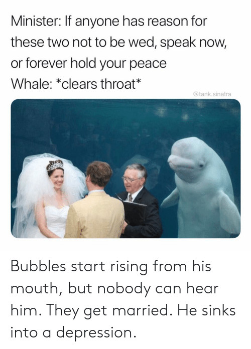 Funny, Depression, and Forever: Minister: If anyone has reason for  these two not to be wed, speak now,  or forever hold your peace  Whale: *clears throat*  @tank.sinatra Bubbles start rising from his mouth, but nobody can hear him. They get married. He sinks into a depression.