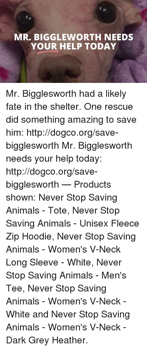 Animals, Memes, and Grey: MIR. BIG GLEWORTH NEEDS  YOUR HELP TODAY Mr. Bigglesworth had a likely fate in the shelter. One rescue did something amazing to save him: http://dogco.org/save-bigglesworth  Mr. Bigglesworth needs your help today: http://dogco.org/save-bigglesworth   — Products shown: Never Stop Saving Animals - Tote, Never Stop Saving Animals - Unisex Fleece Zip Hoodie, Never Stop Saving Animals - Women's V-Neck Long Sleeve - White, Never Stop Saving Animals - Men's Tee, Never Stop Saving Animals - Women's V-Neck - White and Never Stop Saving Animals  - Women's V-Neck - Dark Grey Heather.