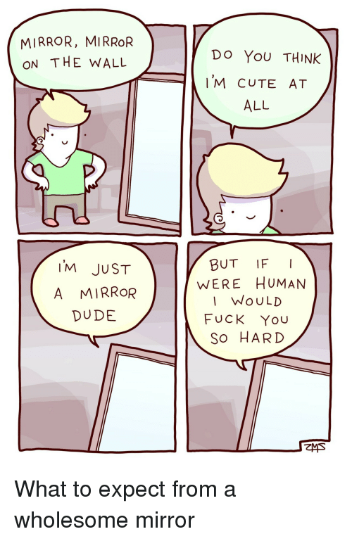 Cute, Dude, and Fuck You: MIRROR, MIRROR  ON THE WALL  Do YoU THINK  'M CUTE AT  ALL  IM JUST  A MIRROR  DUDE  BUT IFI  WERE HUMAN  I WoULD  FUCK You  So HARD What to expect from a wholesome mirror