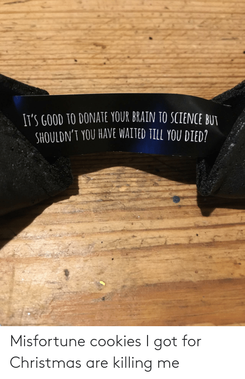 Cookies: Misfortune cookies I got for Christmas are killing me