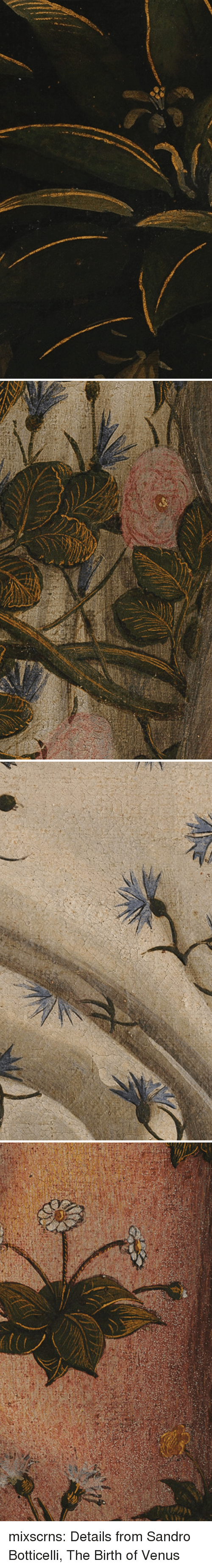 Tumblr, Blog, and Venus: mixscrns: Details from Sandro Botticelli, The Birth of Venus