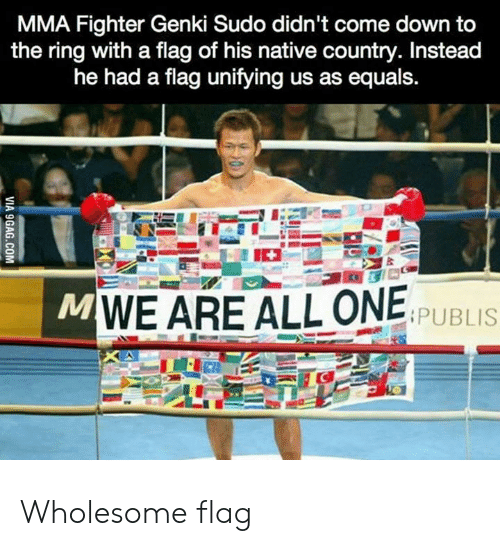 fighter: MMA Fighter Genki Sudo didn't come down to  the ring with a flag of his native country. Instead  he had a flag unifying us as equals.  MWE ARE ALL ONE  PUBLIS  VIA 9GAG.COM Wholesome flag