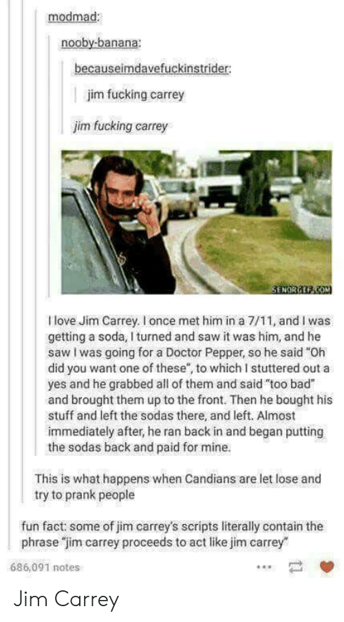 """7/11, Bad, and Doctor: modmad  nooby-banana  becauseimdavefuckinstrider  jim fucking carrey  jim fucking carrey  I love Jim Carrey. I once met him in a 7/11, and I was  getting a soda, I turned and saw it was him, and he  saw I was going for a Doctor Pepper, so he said """"Oh  did you want one of these, to which I stuttered out a  yes and he grabbed all of them and said """"too bad""""  and brought them up to the front. Then he bought his  stuff and left the sodas there, and left. Almost  immediately after, he ran back in and began putting  the sodas back and paid for mine.  This is what happens when Candians are let lose and  try to prank people  fun fact: some of jim carrey's scripts literally contain the  phrase """"jim carrey proceeds to act like jim carrey  686,091 notes Jim Carrey"""
