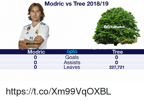 Goals, Memes, and Tree: Modric vs Tree 2018/19  OTroltootball  Hy  OO TrollFootball  Modric  0  0  0  opta  Goals  Assists  Leaves  Tree  0  0  227,721 https://t.co/Xm99VqOXBL