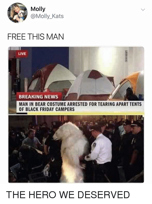 Black Friday, Friday, and Molly: Molly  @Molly_Kats  FREE THIS MAN  LIVE  BREAKING NEWS  MAN IN BEAR COSTUME ARRESTED FOR TEARING APART TENTS  OF BLACK FRIDAY CAMPERS THE HERO WE DESERVED