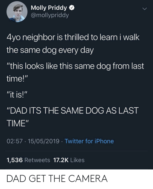 "molly: Molly Priddy Q  @mollypriddy  4yo neighbor is thrilled to learn i walk  the same dog every day  ""this looks like this same dog from last  time!""  ""DAD ITS THE SAME DOG AS LAST  TIME""  02:57 15/05/2019 Twitter for iPhone  1,536 Retweets 17.2K Likes DAD GET THE CAMERA"