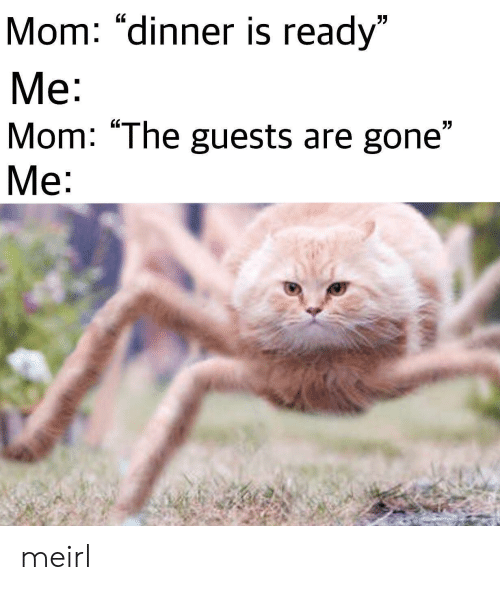 "MeIRL, Mom, and Gone: Mom: ""dinner is ready""  Me:  Mom: ""The guests are gone""  Me:  7 meirl"