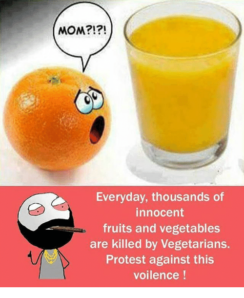 Memes, Protest, and Mom: MOM?!?!  Everyday, thousands of  innocent  fruits and vegetables  are killed by vegetarians.  Protest against this  voilence