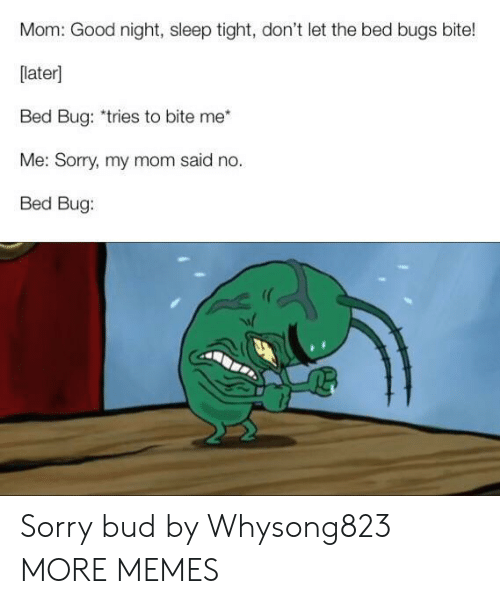 Dank, Memes, and Sorry: Mom: Good night, sleep tight, don't let the bed bugs bite!  [later]  Bed Bug: *tries to bite me  Me: Sorry, my mom said no.  Bed Bug: Sorry bud by Whysong823 MORE MEMES