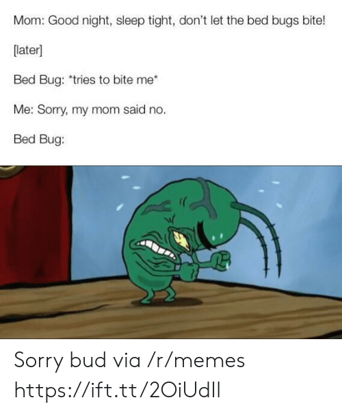Memes, Sorry, and Bed Bugs: Mom: Good night, sleep tight, don't let the bed bugs bite!  [later]  Bed Bug: *tries to bite me  Me: Sorry, my mom said no.  Bed Bug: Sorry bud via /r/memes https://ift.tt/2OiUdIl