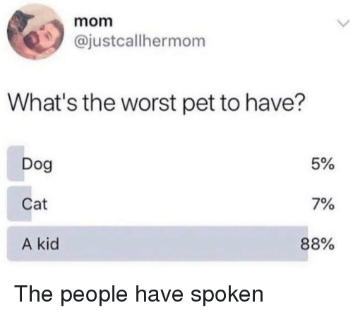 Dank, The Worst, and Mom: mom  @justcallhermom  What's the worst pet to have?  Dog  Cat  A kid  5%  7%  88% The people have spoken