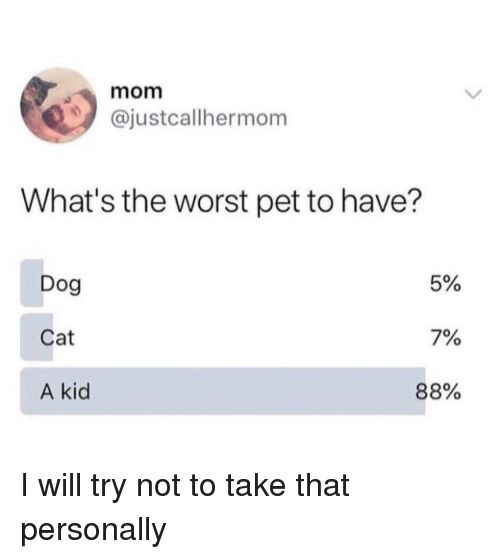 The Worst, Mom, and Dog: mom  @justcallhermom  What's the worst pet to have?  Dog  Cat  A kid  5%  7%  88% I will try not to take that personally