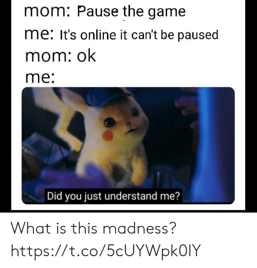 The Game, Video Games, and Game: mom: Pause the game  me: It's online it can't be paused  mom: ok  me:  Did you just understand me? What is this madness? https://t.co/5cUYWpk0IY