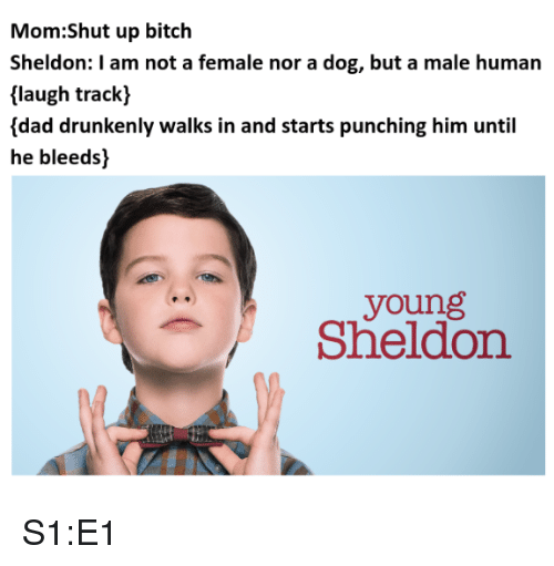 Bitch, Dad, and Shut Up: Mom:Shut up bitch  Sheldon: I am not a female nor a dog, but a male human  laugh track)  {dad drunkenly walks in and starts punching him until  he bleeds)  young  Sheldon S1:E1