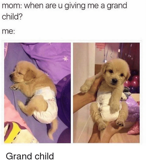 Memes, Grand, and Mom: mom: when are u giving me a grand  child?  me: Grand child