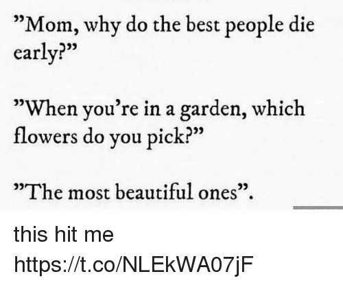 "Beautiful, Best, and Flowers: ""Mom, why do the best people die  early?""  03  93  05  When you re in a garden, which  flowers do you pick?""  09  ""The most beautiful ones"". this hit me https://t.co/NLEkWA07jF"