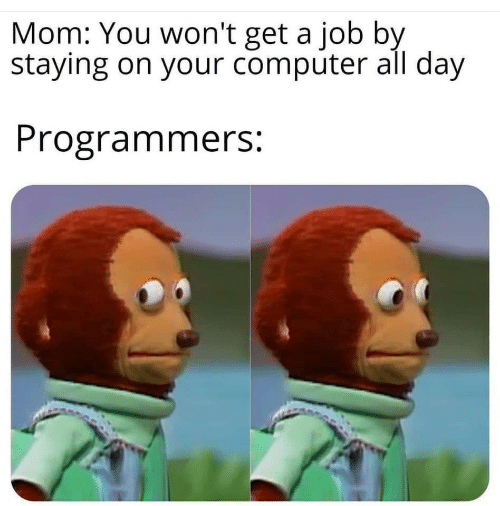 Computer, Mom, and Job: Mom: You won't get a job by  staying on your computer all day  Programmers: