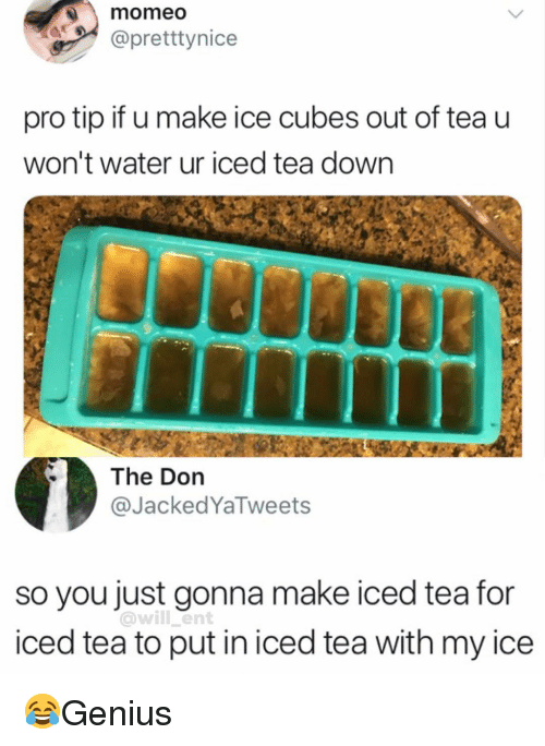 Memes, Water, and Pro: momeo  @pretttynice  pro tip if u make ice cubes out of tea u  won't water ur iced tea down  The Don  @JackedYaTweets  so you just gonna make iced tea for  iced tea to put in iced tea with my ice  @will ent 😂Genius