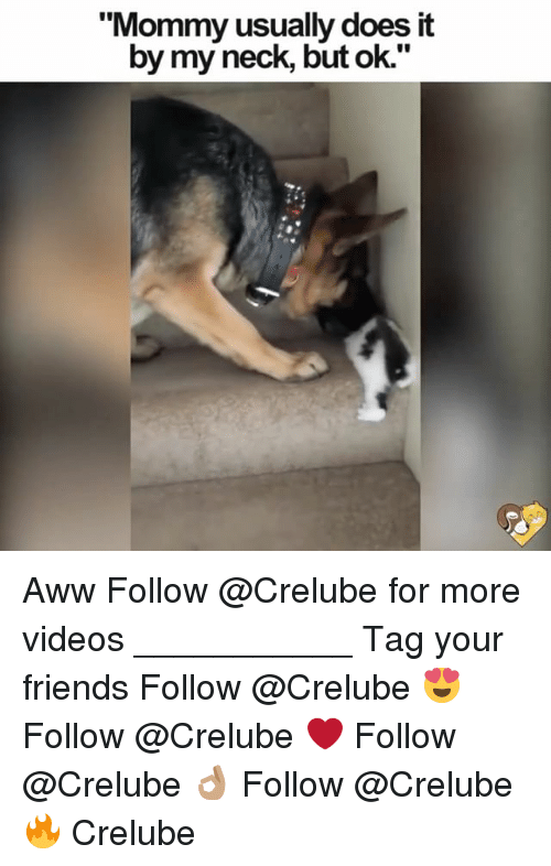 "Awwing: ""Mommy usually does it  by my neck, but ok."" Aww Follow @Crelube for more videos ___________ Tag your friends Follow @Crelube 😍 Follow @Crelube ❤ Follow @Crelube 👌🏽 Follow @Crelube 🔥 Crelube"
