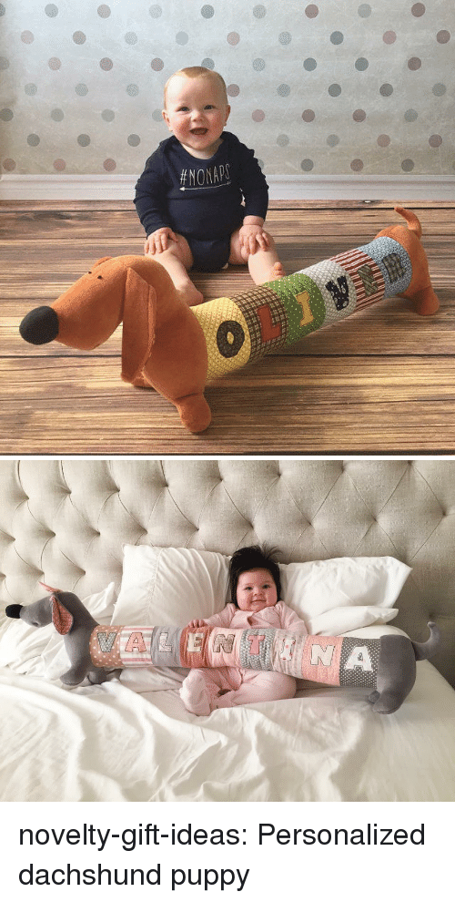 Tumblr, Blog, and Puppy: novelty-gift-ideas:  Personalized dachshund puppy