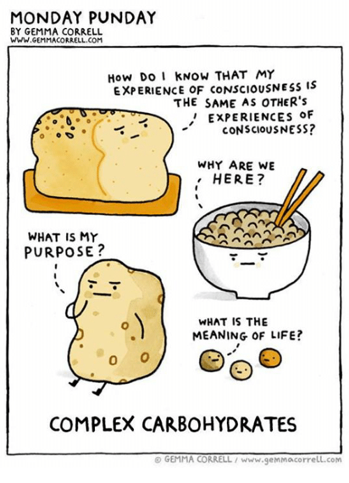 Complex, Life, and Memes: MONDAY PUNDAY  BY GEMMA CORRELL  WWW. GEMMA CORRELL.COM  How Do I kNOW THAT MY  EXPERIENCE OF CONSCIOUSNESS IS  THE SAME AS OTHER's  EXPERIENCEs oF  CONSCIOUSNESS?  WHY ARE WE  HERE?  WHAT IS MY  PURPOSE  WHAT IS THE  MEANING OF LIFE?  COMPLEX CARBOHYDRATES  GEMMA CORRELL www.genMocorrell.com