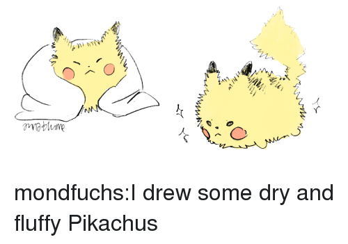 Target, Tumblr, and Blog: mondfuchs:I drew some dry and fluffy Pikachus
