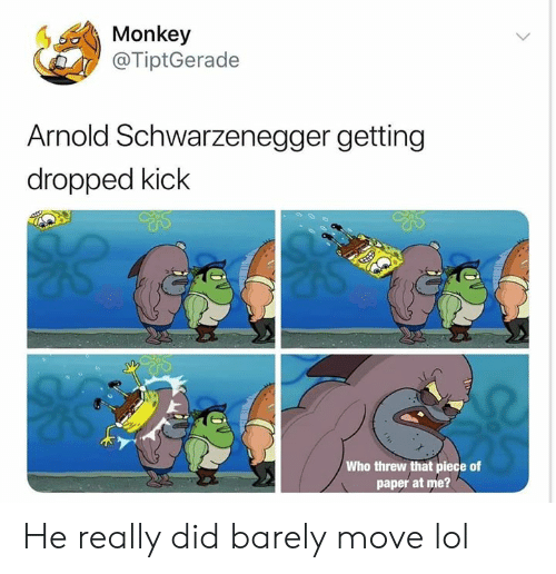 schwarzenegger: Monkey  @TiptGerade  Arnold Schwarzenegger getting  dropped kick  Who threw that piece of  paper at me? He really did barely move lol