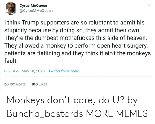 monkeys: Monkeys don't care, do U? by Buncha_bastards MORE MEMES