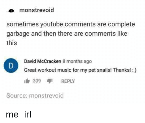 Music, youtube.com, and Irl: monstrevoid  sometimes youtube comments are complete  garbage and then there are comments like  this  David McCracken 8 months ago  Great workout music for my pet snails! Thanks!:)  309 aji REPLY  Source: monstrevoid me_irl