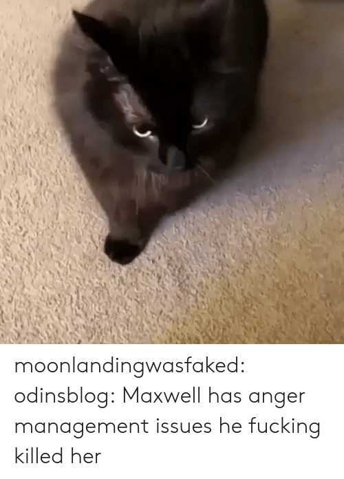 maxwell: moonlandingwasfaked: odinsblog:   Maxwell has anger management issues   he fucking killed her