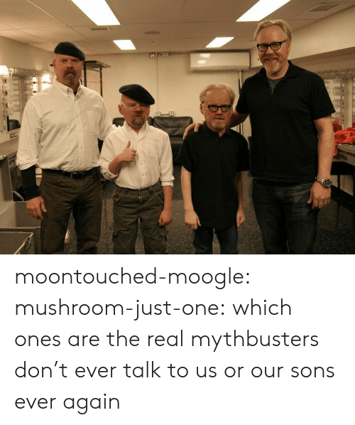 Sons: moontouched-moogle:  mushroom-just-one:  which ones are the real mythbusters   don't ever talk to us or our sons ever again