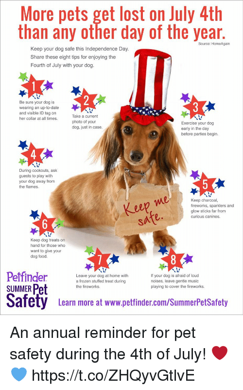 annuale: More pets get lost on July 4th  than any other day of the year  Source: HomeAgain  Keep your dog safe this Independence Day  Share these eight tips for enjoying the  Fourth of July with your dog  Be sure your dog is  wearing an up-to-date  and visible ID tag on  her collar at all times  Take a current  photo of your  dog, just in case  Exercise your dog  early in the day  before parties begin  During cookouts, ask  guests to play with  your dog away from  the flames  eep me  safe.  Keep charcoal,  fireworks, sparklers and  glow sticks far from  curious canines  Keep dog treats on  hand for those who  want to give your  dog food  Leave your dog at home with  a frozen stuffed treat during  the fireworks  If your dog is afraid of loud  noises, leave gentle music  playing to cover the fireworks  SUMMER Pet  Safety Leam more at www.pettinder.com/SummerPetSatoty  Learn more at www.petfinder.com/SummerPetSafety An annual reminder for pet safety during the 4th of July! ❤️💙 https://t.co/ZHQyvGtlvE