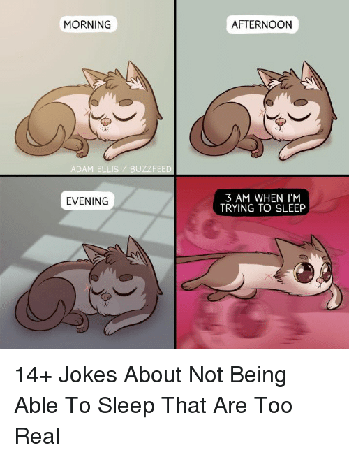 Buzzfeed, Jokes, and Sleep: MORNING  AFTERNOON  ADAM ELLIS BUZZFEED  3 AM WHEN I'M  TRYING TO SLEEP  EVENING 14+ Jokes About Not Being Able To Sleep That Are Too Real
